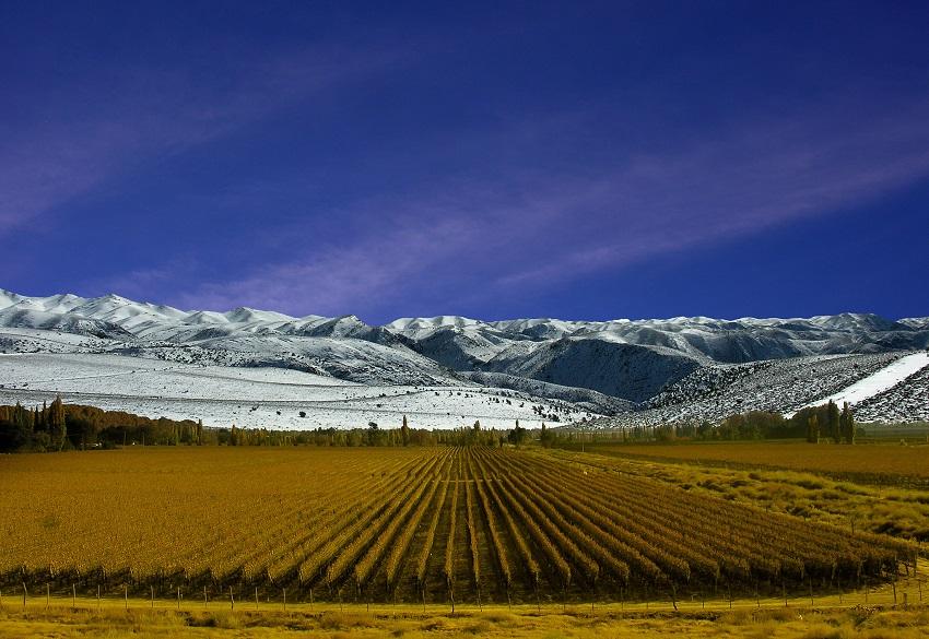 Travel to Mendoza in Argentina