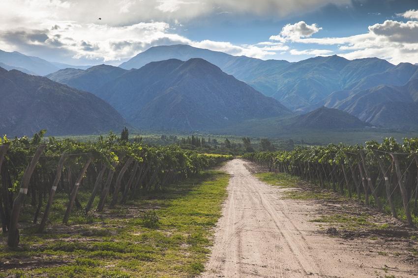 travel to salta in argentina
