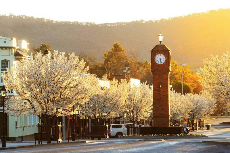 Travel to Mudgee in Australia | viajeras.com
